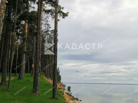 derevnya-torohovo-gorodeckiy-rayon фото