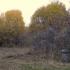 земельный участок 12 соток село Каменки