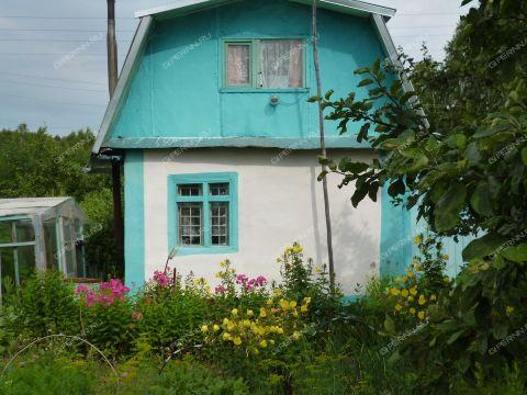 dacha-derevnya-yagodnoe-bogorodskiy-rayon фото